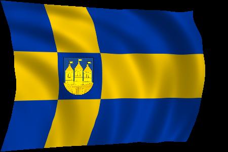 vlag+van+Tilburg2.png
